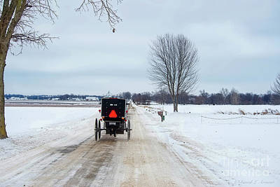 Photograph - Amish Buggy On Winter Road by David Arment