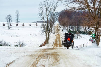 Photograph - Amish Buggy Up The Hill One by David Arment