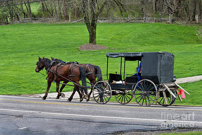 Photograph - Amish Buggy With Saw Horses by David Arment
