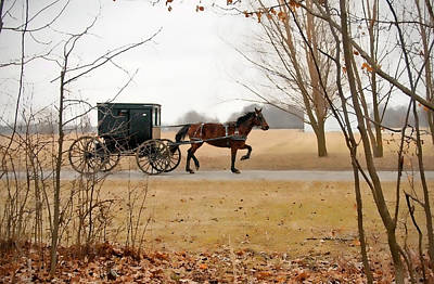 Farm Scene Photograph - Amish Dream 1 by David Arment