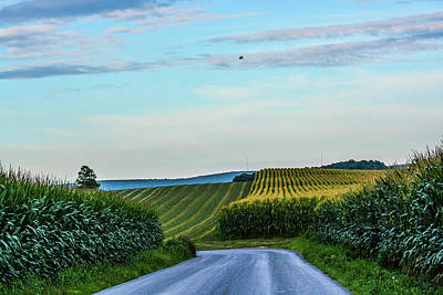 Photograph - Amish Farm At Golden Hour by Tana Reiff