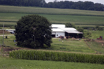 Amish Farm Original by Hugh Smith