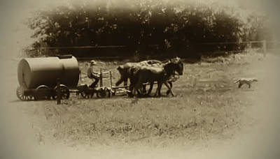 Dog Photograph - Amish Farmer - Lancaster County Pa. by Bill Cannon