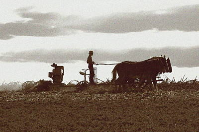 Photograph - Amish Farmer 2 by Lou Ford