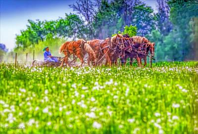 Harvest Photograph - Amish Farming by LeeAnn McLaneGoetz McLaneGoetzStudioLLCcom