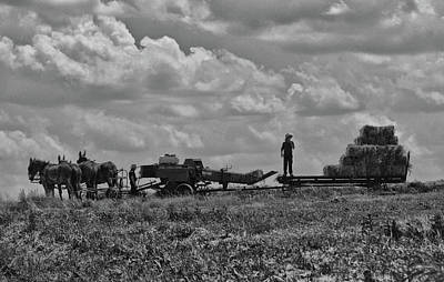 Amish Farming Art Print