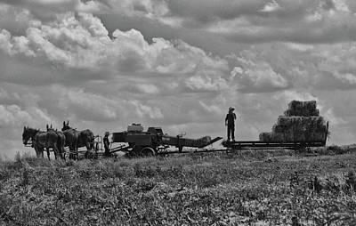 Photograph - Amish Farming by Tricia Marchlik