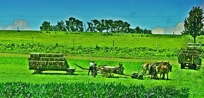 Amish Farmer Photograph - Amish Gathering Hay by Bill Cannon