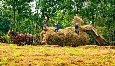 Horse Photograph - Amish Harvest 2 - Paint by Steve Harrington