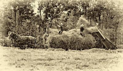 Amish Harvest 2 - Sepia Art Print by Steve Harrington