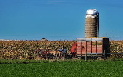 Amish Harvest - Indiana Art Print by Mountain Dreams