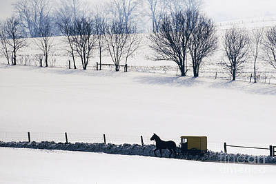 Old Country Roads Photograph - Amish Horse And Buggy In Snowy Landscape by Jeremy Woodhouse