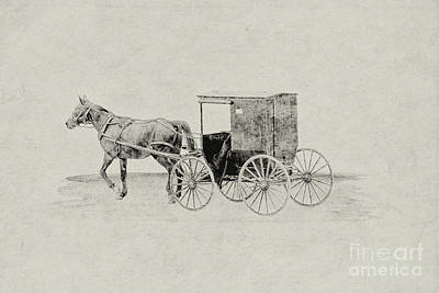 Digital Art - Amish Horse And Buggy Sketch by Randy Steele