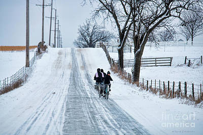 Photograph - Amish Kids Going To School by David Arment