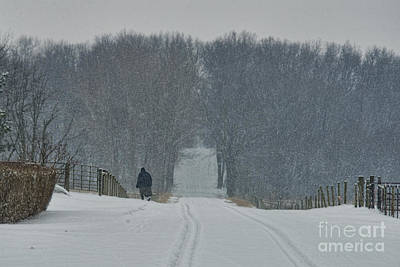 Amish Photograph - Amish Lady In Snowstorm by David Arment