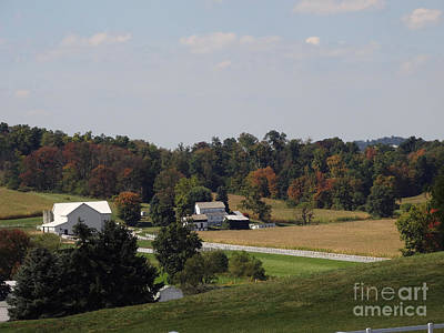 Photograph - Amish Living by Gena Weiser