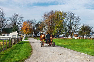 Photograph - Amish Man And Work Horses by David Arment
