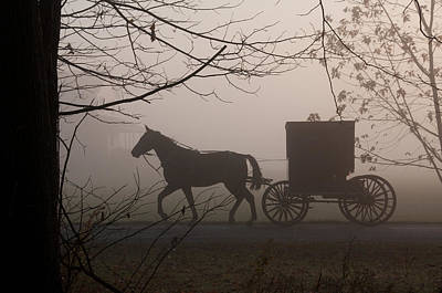 Photograph - Amish Morning 1 by David Arment
