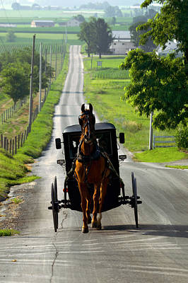 Amish Morning Commute Art Print