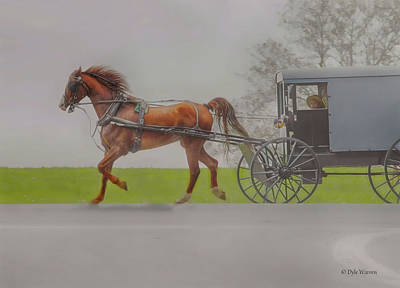 Photograph - Amish Sunday Ride by Dyle Warren