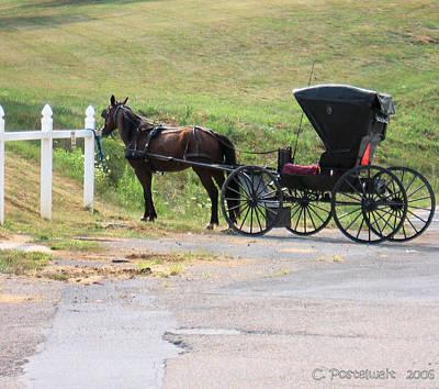 Sunday Drive Photograph - Amish Transportation by Carolyn Postelwait
