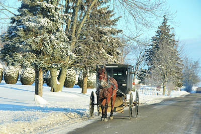 Amish Winter Art Print