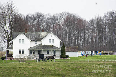 Amish Photograph - Amishville by David Arment