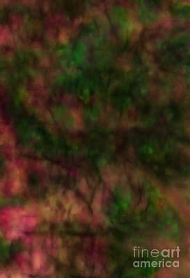 Ammolite Digital Art - Ammolite by Devalyn Marshall