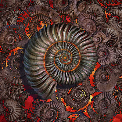 Texture Digital Art - Ammonite 2 by Jerry LoFaro