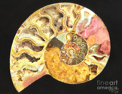 Ammonite Fossil Art Print