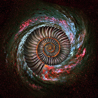 Prehistoric Digital Art - Ammonite Galaxy by Jerry LoFaro