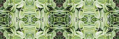 Photograph - Ammonoosuc Green by Larry Davis Custom Photography