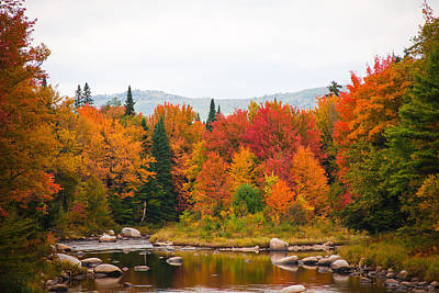 Photograph - Ammonoosuc River by Robert Clifford