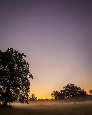 Photograph - Among Mist And Fog by Chris Bordeleau