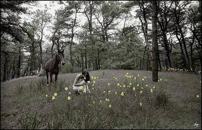 Photograph - Among The Daffodils by Wayne King