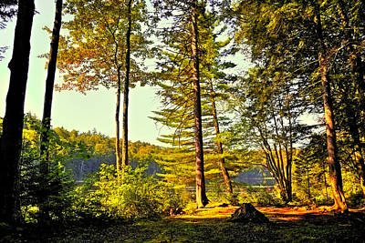 Photograph - Among The Shadows Of Cary Lake by David Patterson