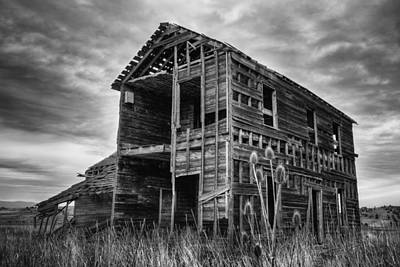 Abandoned Ranch Photograph - Among The Weeds - Monochrome by Loree Johnson