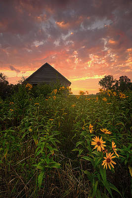 Photograph - Among The Wildflowers by Aaron J Groen