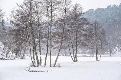 Among Winter Silence Art Print