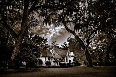 Photograph - Amongst Mighty Oaks - Bw by Chris Bordeleau