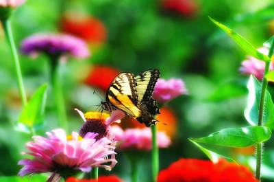 Pollinate Digital Art - Amongst The Flowers by Bill Cannon