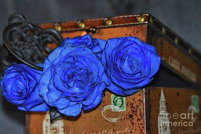Photograph - Amore Blu by Diana Mary Sharpton