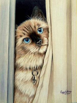 Colored Pencil Painting - Amos by Peggy Osborne