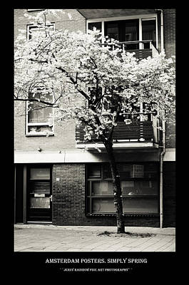 Photograph - Amsterdam Posters. Blooming Sakura by Jenny Rainbow
