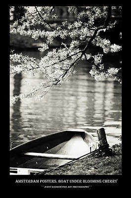 Photograph - Amsterdam Posters. Boat Under Blooming Cherry by Jenny Rainbow