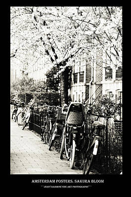 Photograph - Amsterdam Posters. Sakura Bloom by Jenny Rainbow
