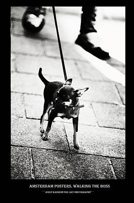 Photograph - Amsterdam Posters. Walking The Boss by Jenny Rainbow