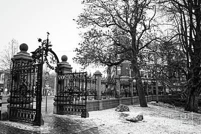 Netherlands Photograph - Amsterdam Vondelpark In Winter by Carol Groenen