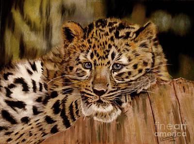 Painting - Amur Leopard Cub by Lance Sheridan-Peel