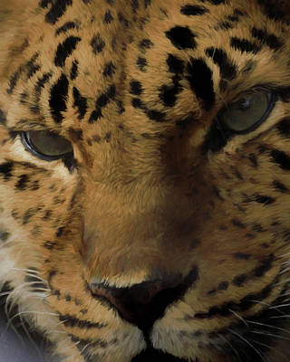 Digital Art - Amur Stare by Ernie Echols